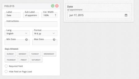 FormCraft Review: datepicker fields