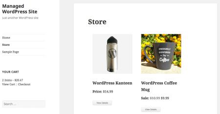 Cart66 Cloud review: store