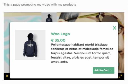 WooCommerce Shoppable Video: product box