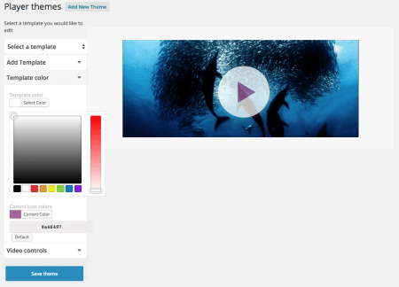 WooCommerce Shoppable Video: player theme