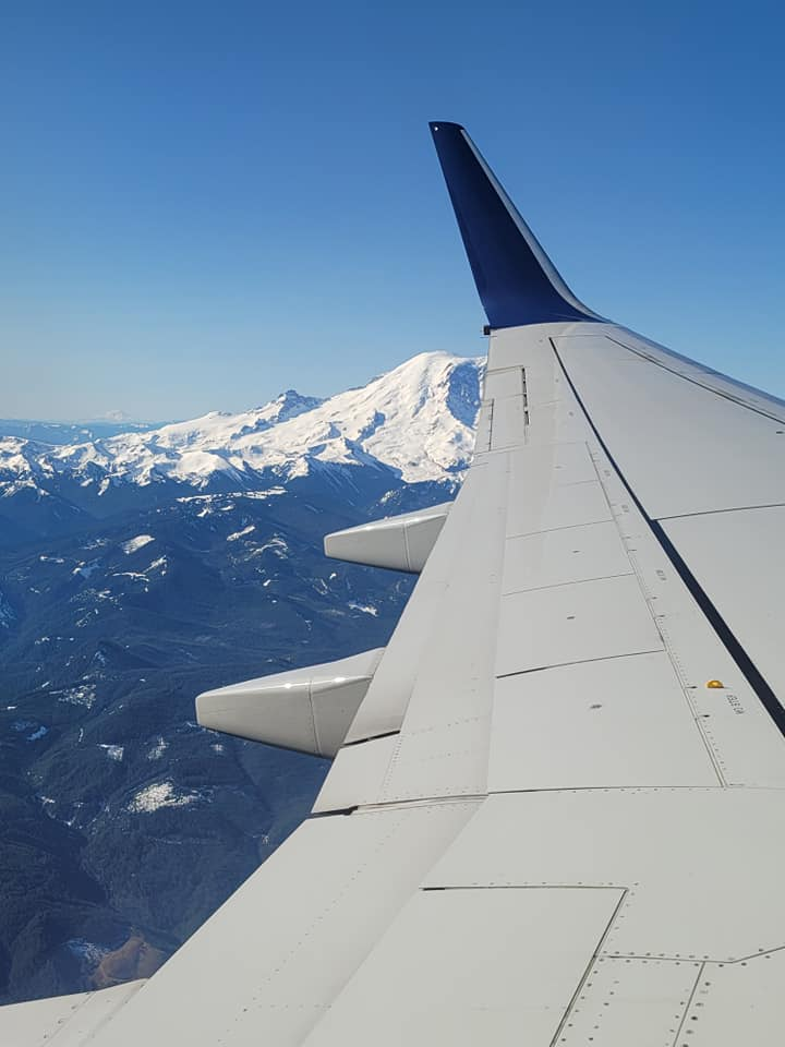 Elm Tree Solutions LLC photo of Mt. Reiner from an airplane window view