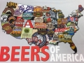 Beers-of-America-100-Percent-Polyester