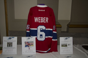2017 Annual Giant Steps Foundation Auction