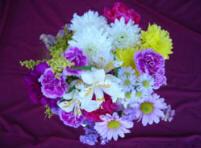 12 Stem Mixed Flower Bouquet Image