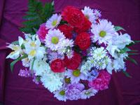 22 Stem Mixed Flower Bouquet Image