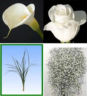 Combo Box #1 Roses & Callas Image