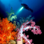 abyss-diving-2