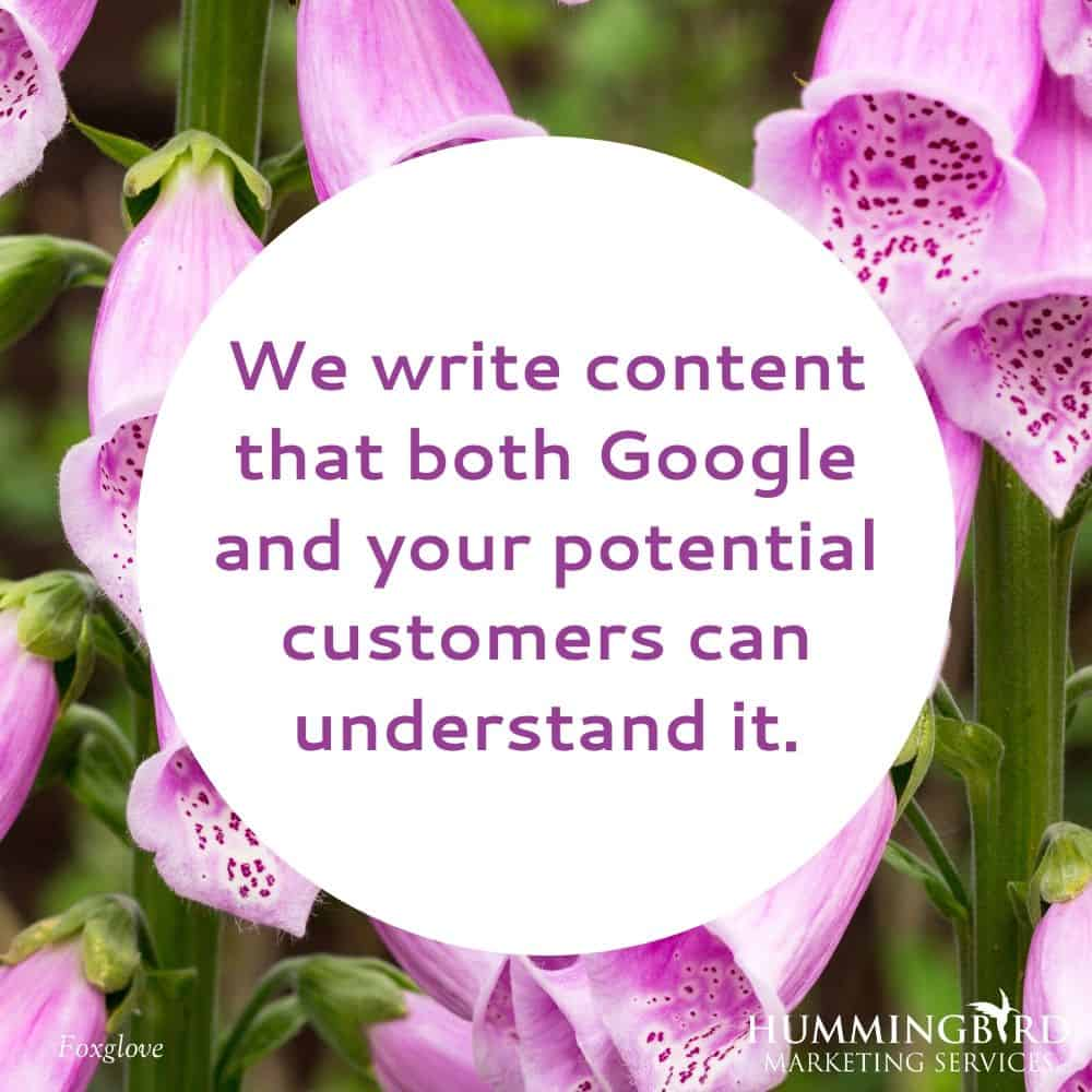 Hummingbird Marketing Services — Content Writing in Seattle and Cleveland