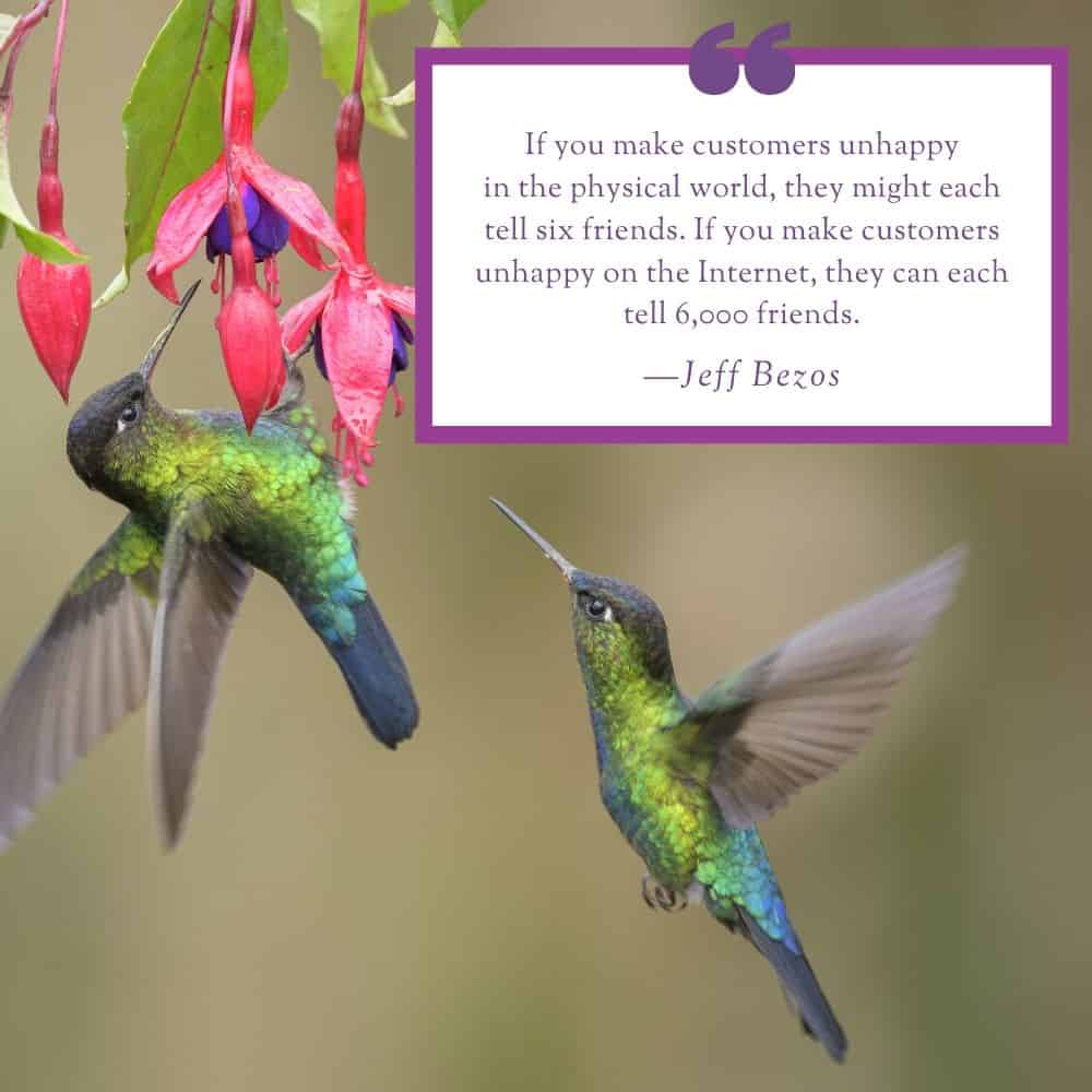 Hummingbird Marketing Services — Social Media in Seattle and Cleveland
