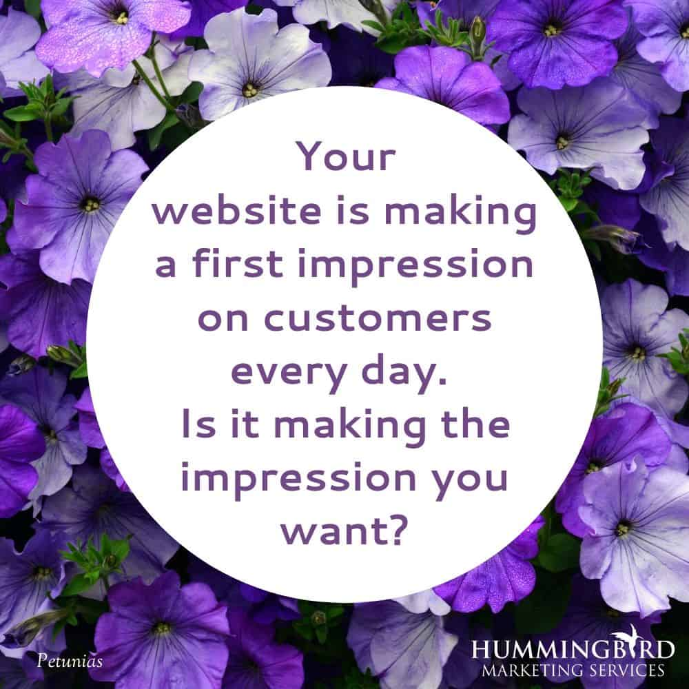 Hummingbird Marketing Services — Web Design in Seattle and Cleveland