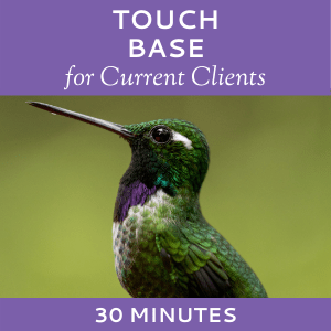 Schedule a Touch Base with Hummingbird Marketing Services (for Current Clients)