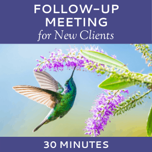 Schedule a Follow-up Meeting with Hummingbird Marketing Services (for New Clients)