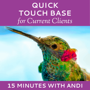 Schedule a Quick Touch Base with Andi Lucas of Hummingbird Marketing Services (for Current Clients)