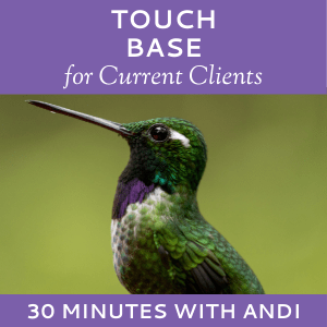 Schedule a Touch Base with Andi Lucas of Hummingbird Marketing Services (for Current Clients)