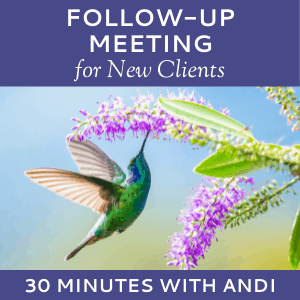 Schedule a Follow-up Meeting with Andi Lucas of Hummingbird Marketing Services (for New Clients)