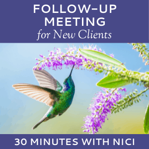 Schedule a Follow-up Meeting with Nici Lucas of Hummingbird Marketing Services (for New Clients)