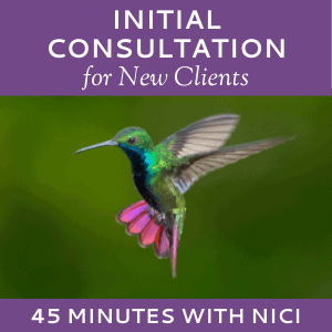 Schedule an Initial Consultation with Nici Lucas of Hummingbird Marketing Services (for New Clients)