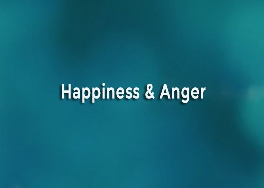 Happiness and Anger