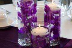 Orchid Arrangements