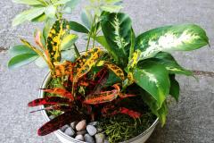 Tropical Planter,  Starting @ $35