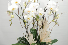 Orchid Planter, $500