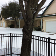 Winter freeze and power outage in Texas