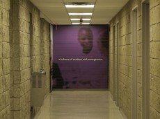 Custom Wallpaper for Highlight Wall