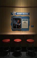 Muddy Waters-min