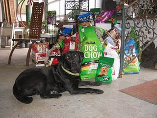 official black dog Sally and donated dog food