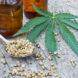 Cannabis Digital Marketing Consultant