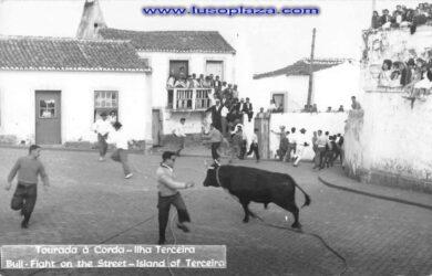 www.lusoplaza.com