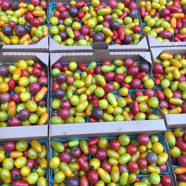 cherrytomatoes_0