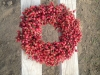 Rosehip Wreaths