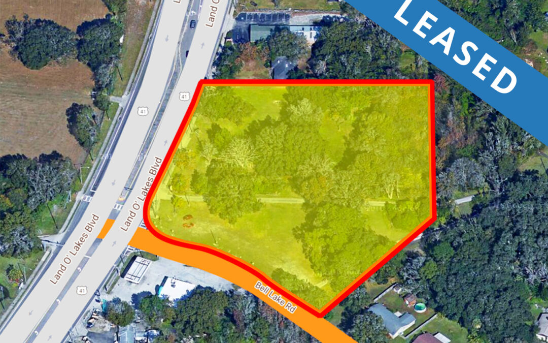 Retail Site: 4222 Land O Lakes Blvd, Lutz, FL 34639