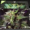 V Syndicate Blue Dream Rolling Tray