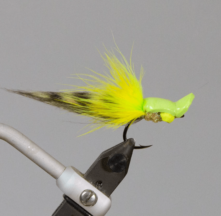 Snook_Gurgler_Fly