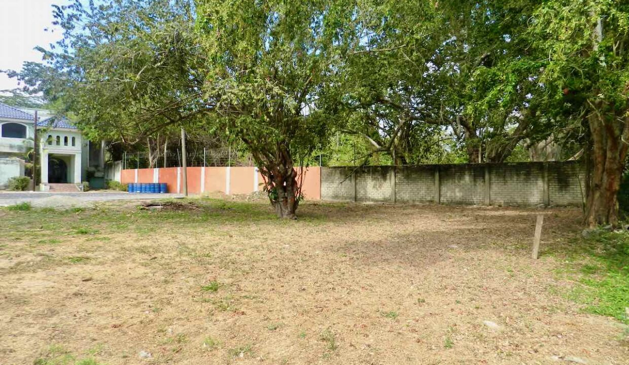 Lote Real del Country frente campo golf - 8