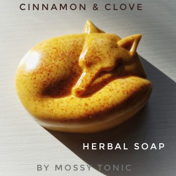 Cinnamon & Cloves Herbal Soap by Mossy Tonic