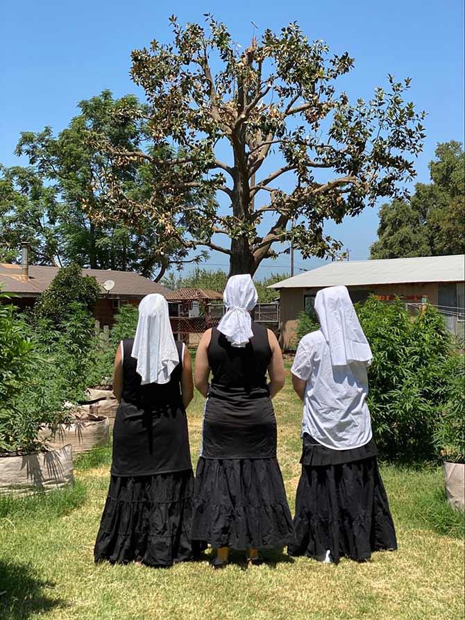 sisters looking ahead