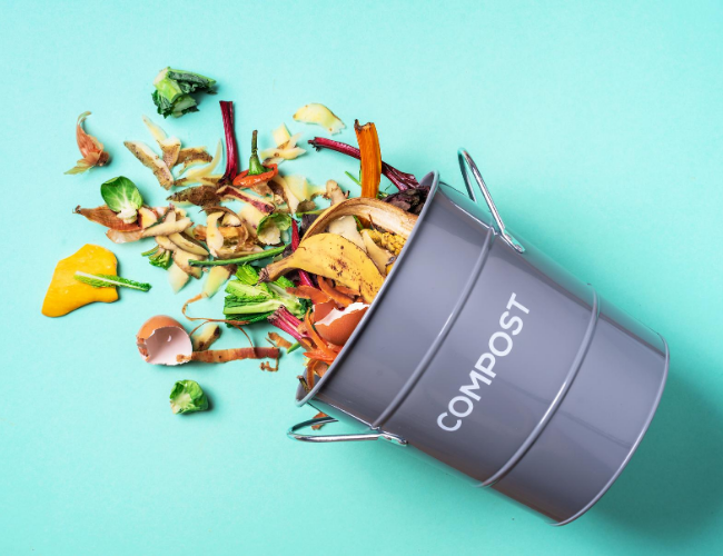 The Best Compost Bins For Your Kitchen