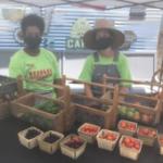 USDA: Healthy Food Funding Initiative3