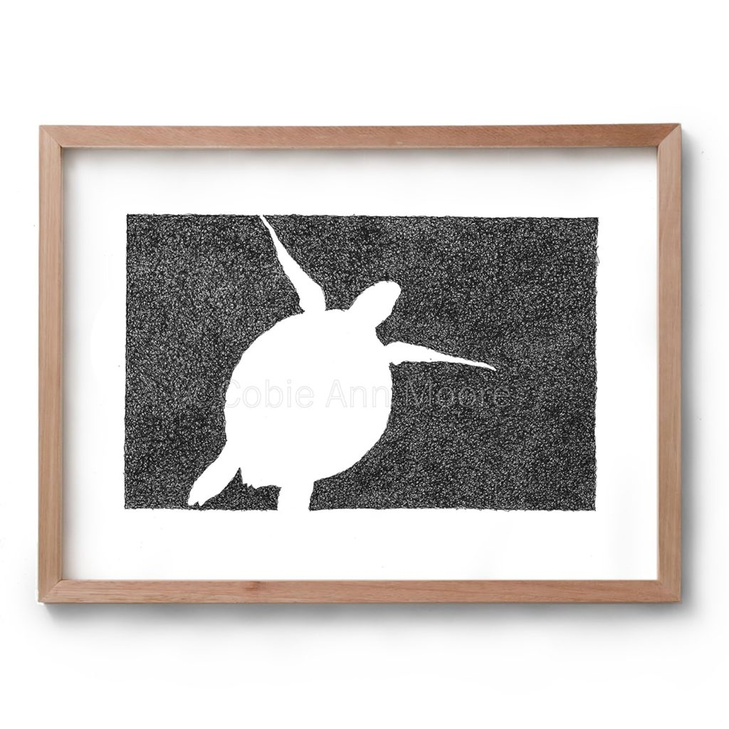 Black and white drawing by Cobie Ann Moore of a Turtle framed in a simple wooden frame