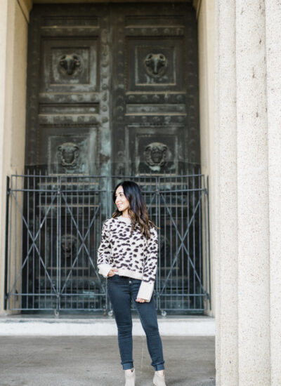 Animal Print Sweater Under $30