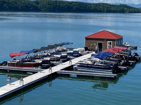 Enjoy Independence Day On Douglas Lake