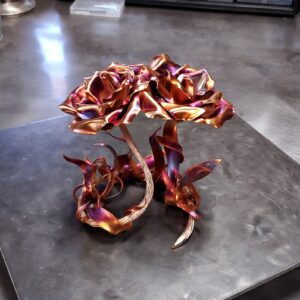 Roses & Flowers