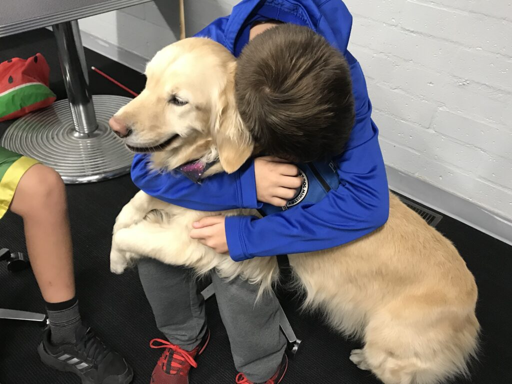 TST Support for K-9 Comfort Dogs