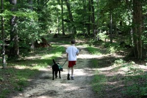 Walking on trail