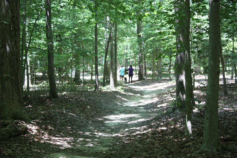 Waller Mill Park Hiking Trail Williamsburg VA Attraction