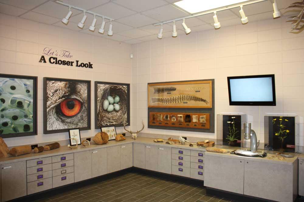 Newport News Park Discovery Center Inside