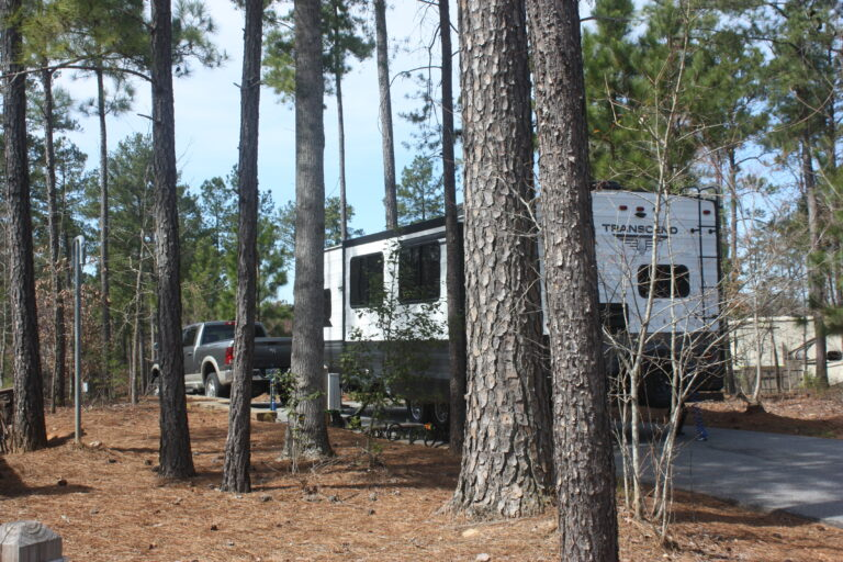 Don Carter State Park Review